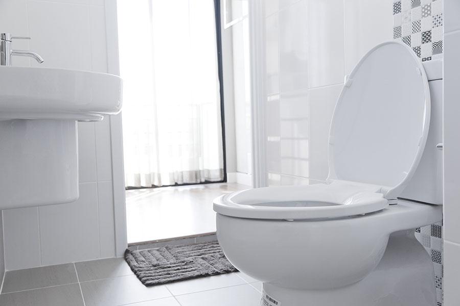 К чему снится туалет: толкование в сонниках
