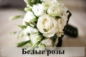 К чему снятся белые розы: разные толкования ночного видения
