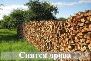 К чему снятся дрова согласно различным сонникам