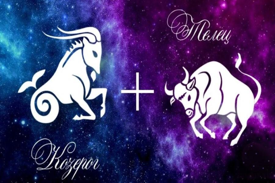 Козерог и Телец: совместимость знаков зодиака в любви и дружбе