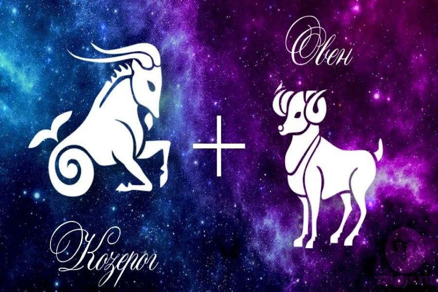 Овен и Козерог — совместимость знаков зодиака в любви и дружбе