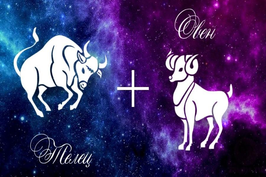 Овен и Телец: совместимость знаков зодиака
