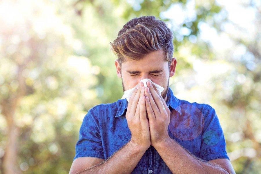 Правдивая чихалка на четверг по времени: приметы о чихании