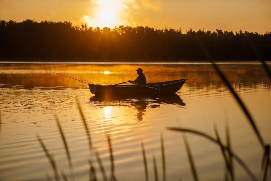 Пришлось плыть во сне по реке: толкования сонников