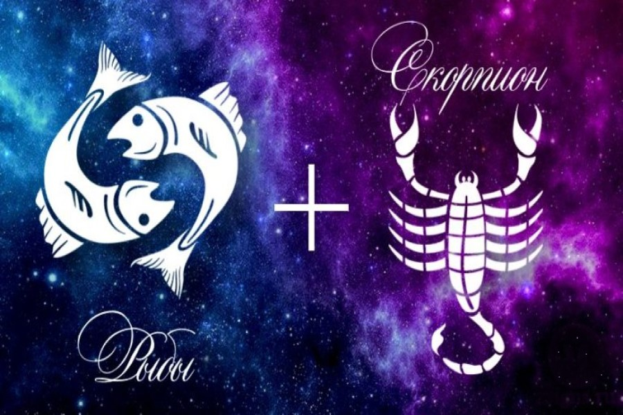 Скорпион и Рыбы: совместимость в любовных отношениях, браке, дружбе