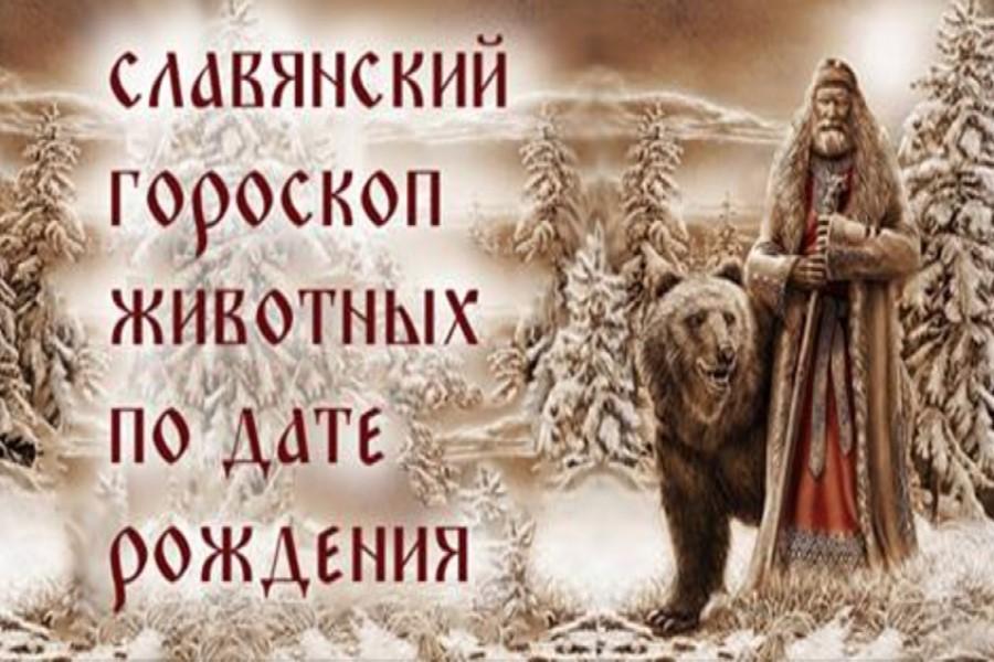 Славянский календарь животных — гороскоп по году и месяцу рождения