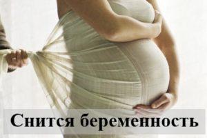 Снится беременность: толкования сна в сонниках