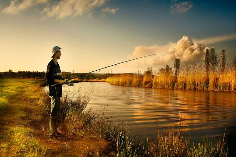 К чему снится ловить рыбу во сне?