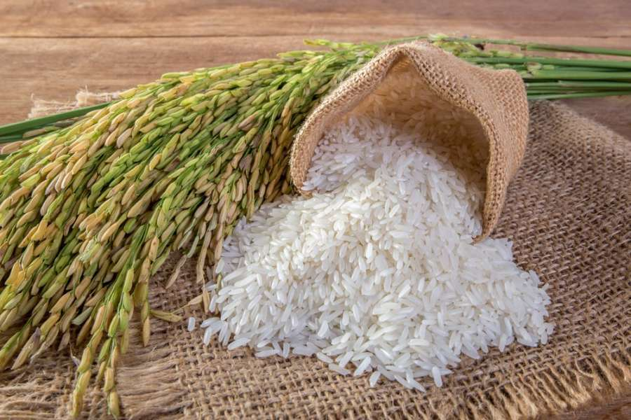 К чему снится рис — толкование по сонникам