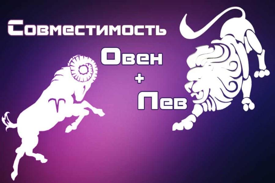 Совместимость Овна и Льва в любовных отношениях, деловой сфере, в дружбе