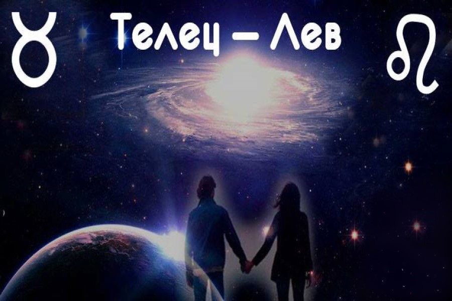 Совместимость Тельца и Льва в любви, браке, дружбе, бизнесе