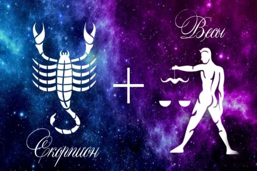 Совместимость знаков Скорпион и Весы в любви и семейной жизни