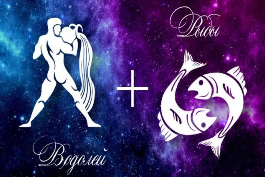 Совместимость знаков Водолея и Рыбы в дружбе, любви, сексе, работе