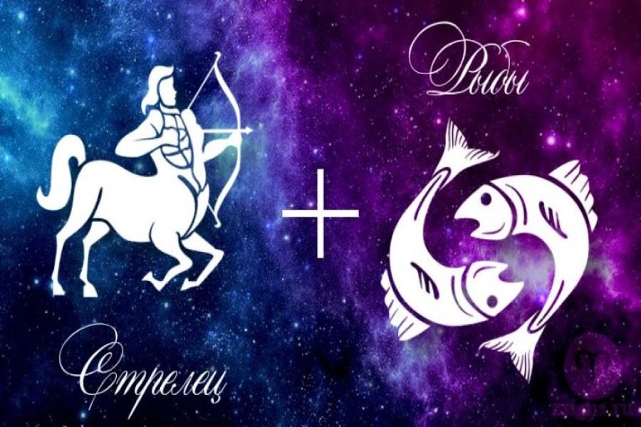 Стрелец и Рыбы: совместимость знаков зодиака в любовных, дружеских и рабочих отношениях
