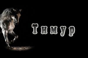 Тимур: значение имени, характер и судьба