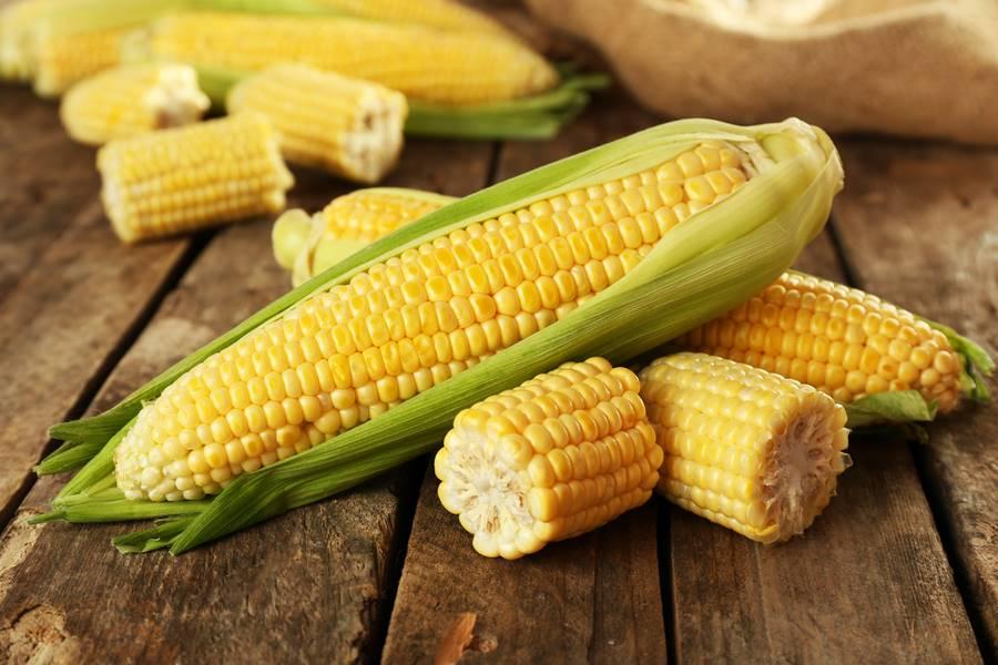 Толкование сонников: к чему снится кукуруза?