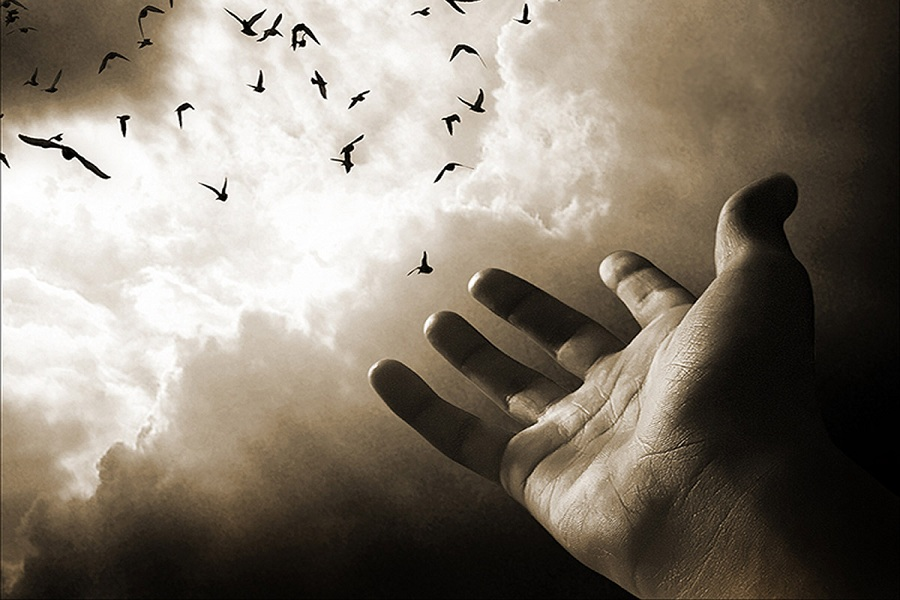 Толкование сонников: к чему снится смерть друга?