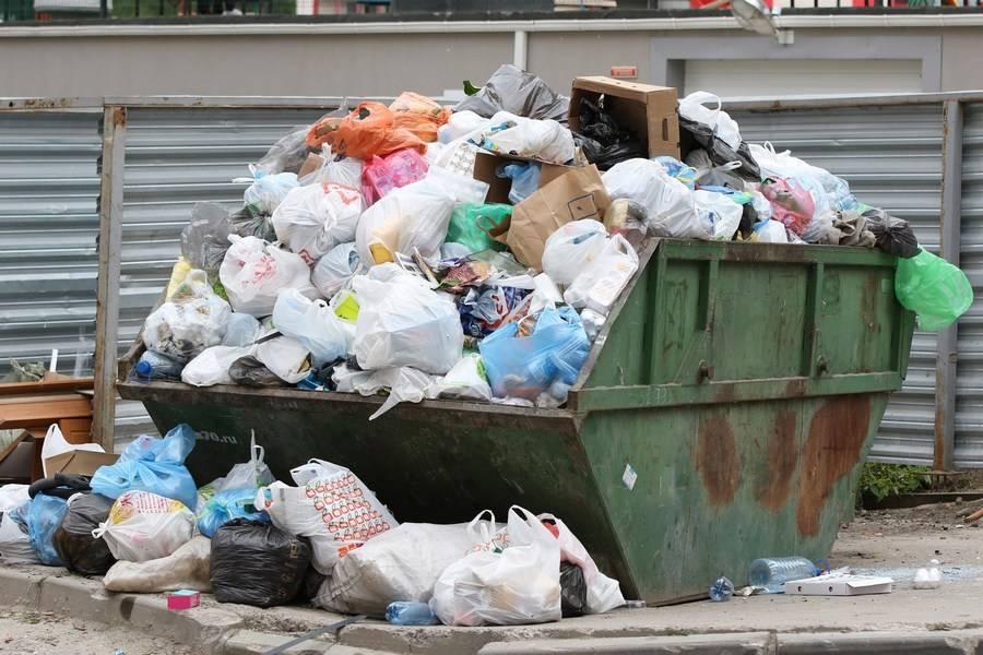 Видеть во сне мусор — толкования известных сонников