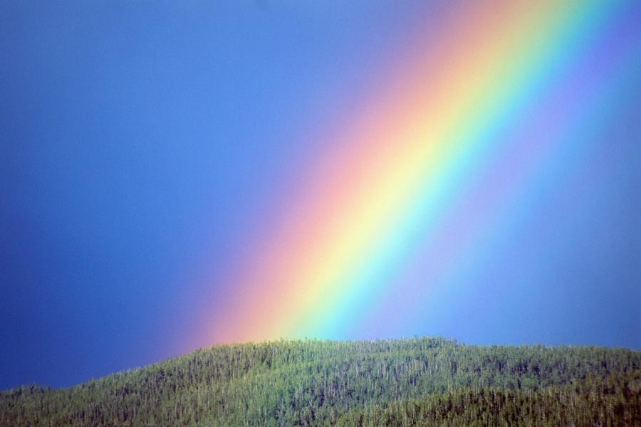 Видеть во сне радугу на небе: толкование в сонниках