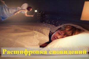 Значение и расшифровка сновидений по соннику Миллера